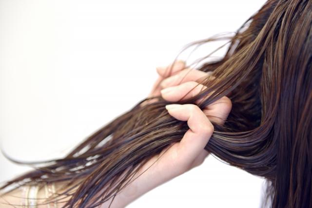 美容室 髪の毛を持つ手1